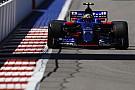 Сайнс предсказал сложнейшую для Toro Rosso квалификацию в сезоне