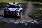 WRC WRC Polen: Neuville nadert Ogier dankzij winst in Rally van Polen