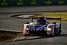 IMSA Alonso, Daytona'daki