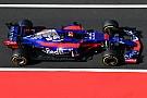 F1 Toro Rosso espera