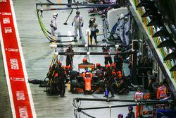 Stoffel Vandoorne, McLaren MCL32, makes a stop