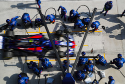 Pierre Gasly, Toro Rosso STR13 Honda, dans les stands