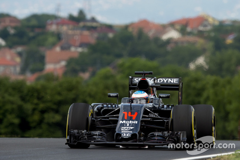 Fernando Alonso, McLaren-Honda, MP4-31