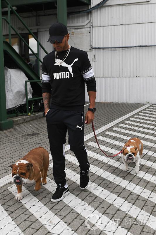 Lewis Hamilton, Mercedes AMG F1 ve köpekleri Roscoe, Coco