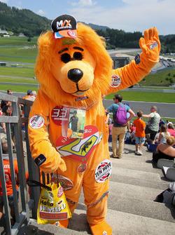 Oranje leeuw van Max Verstappen
