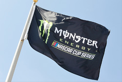 Флаг Monster Energy