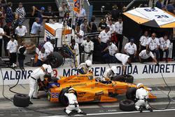 Пит-стоп: Фернандо Алонсо, Andretti Autosport Honda