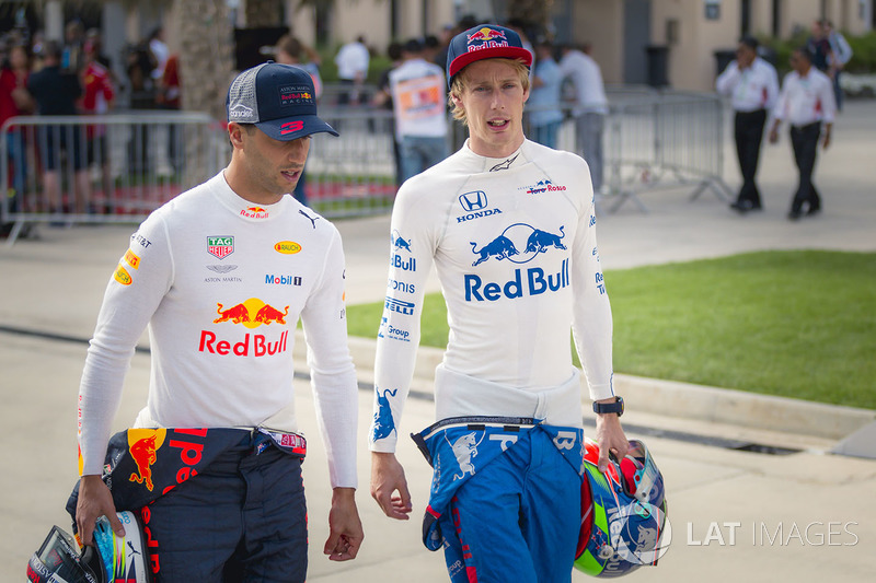 Daniel Ricciardo, Red Bull Racing and Brendon Hartley, Scuderia Toro Rosso