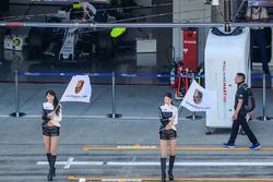 De jeunes femmes avec des drapeaux Porsche