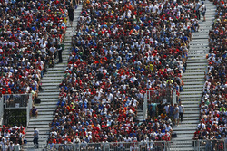 A packed grandstand of fans
