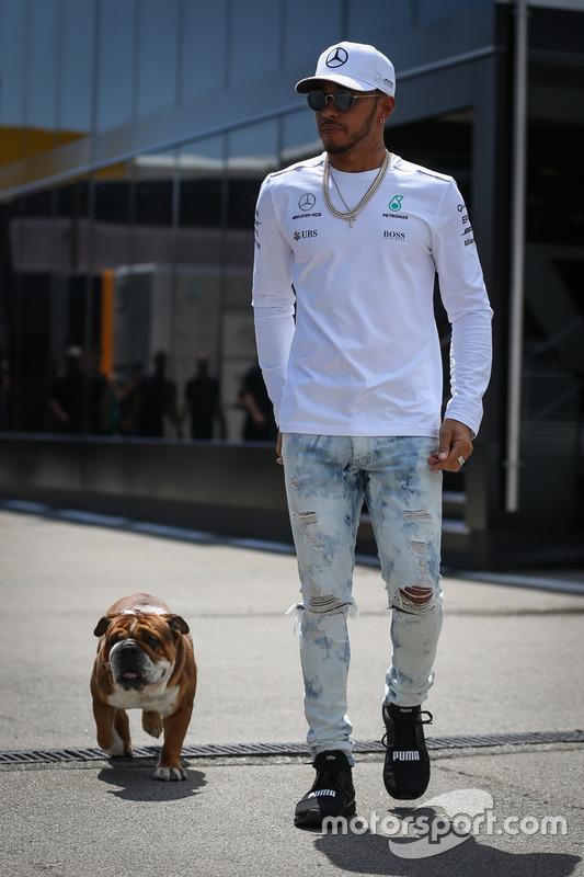 Гонщик Mercedes AMG F1 Льюис Хэмилтон со своим псом Роско