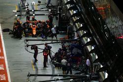 Стоффель Вандорн, McLaren MCL32, піт-стоп