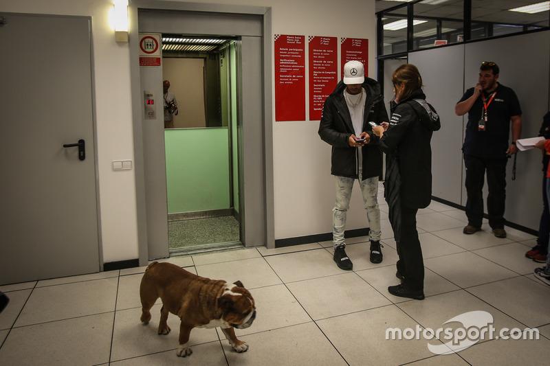 Lewis Hamilton, Mercedes AMG F1y su perro Roscoe