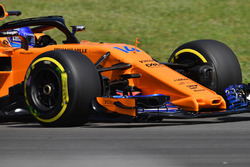 Fernando Alonso, McLaren MCL33 nose and front wing