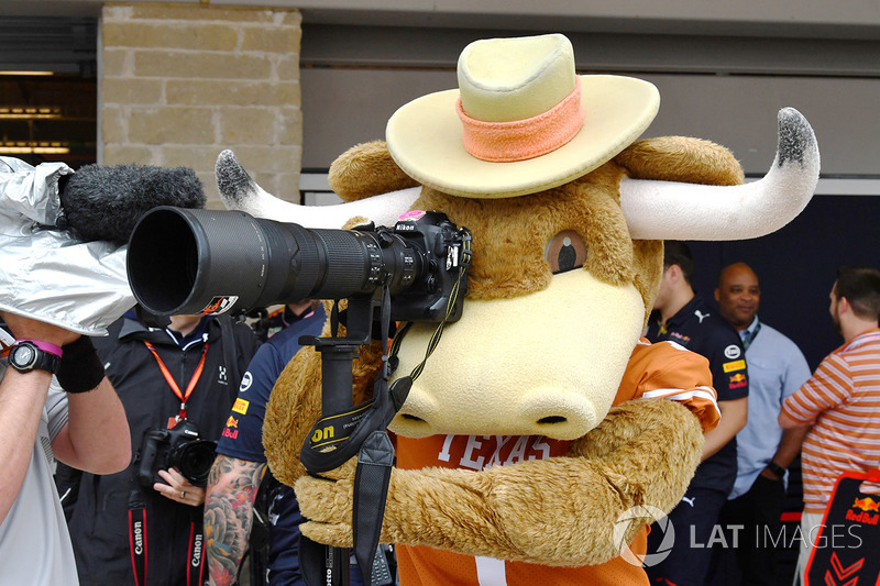 Mascota de los Cuernos Largos de Texas