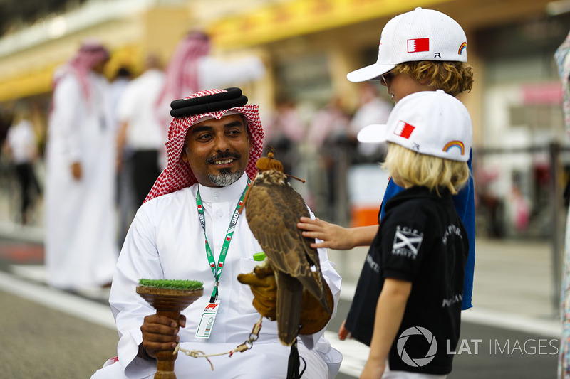 A bird of prey is admired by two children