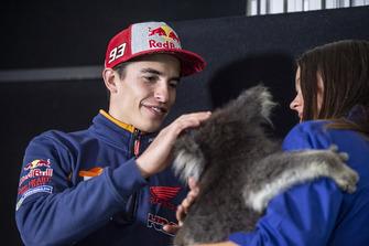 Marc Marquez, Repsol Honda Team, mit Koala