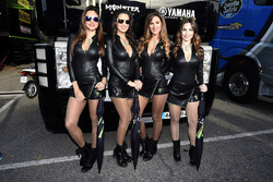 Chicas Monster energy