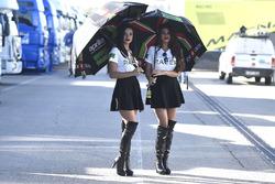 Des gridgirls