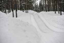 İsveç Rallisi atmosfer