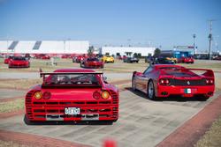 Ferrari GTO Evo, Ferrari F40