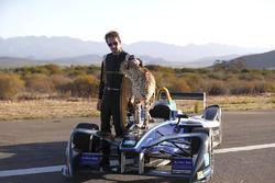 Jean-Eric Vergne mit ein Gepard