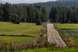Caminos del Rally de Finlandia