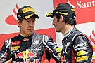 Vettel insists Webber not Red Bull favourite