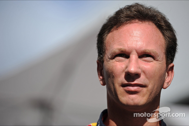 Reliability 'number 1 challenge' for 2014 - Horner