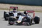 Тост впечатлён пилотами Toro Rosso