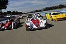 Tre gare insieme alla World Series Renault nel 2013