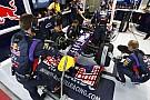 Fallows oggetto di contesa tra McLaren e Red Bull