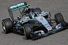 Rosberg non si sbilancia in pronostici sul passo gara