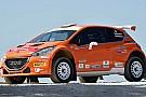 Nuova livrea per la Peugeot 208 di Paolo Andreucci