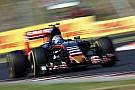 Тост: Toro Rosso нужно работать над дисциплиной