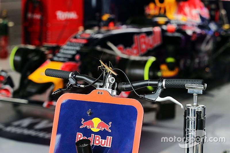 Red Bull assure qu'il n'est pas trop tard ; discussions relancées avec Mercedes ?