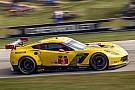 Jan Magnussen: New Corvette tested; fresh hopes for Kevin