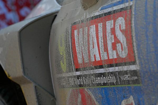 WRC英国站前瞻:泥泞路上的最后一站