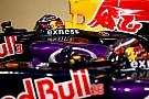 Пилоты Red Bull поддержали идею закрытых кокпитов