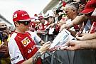 Vettel a NUMBER ONE, Raikkönen helyére érkezzen Verstappen?