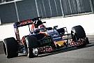 В Toro Rosso использовали пятницу в Монце в качестве тестового дня
