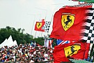 Ferrari stays most popular team, Mercedes makes big gains