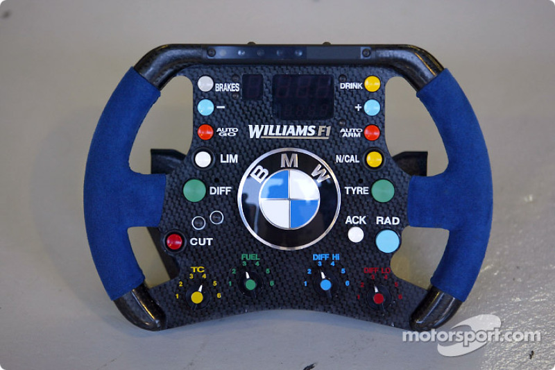 Williams F1 steering wheel at Brazilian GP