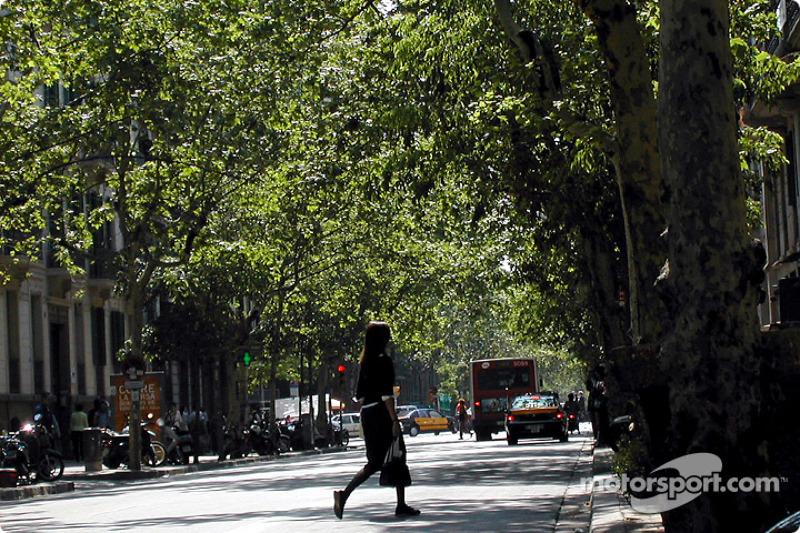 Una tranquila calle en Barcelona