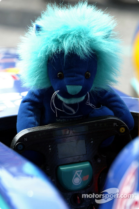 Another young driver at Sauber