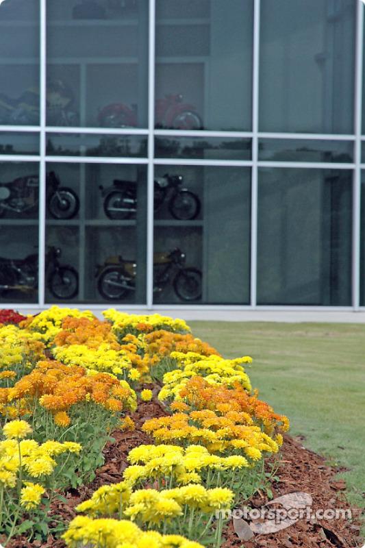 Des fleurs avec des reflets de moto
