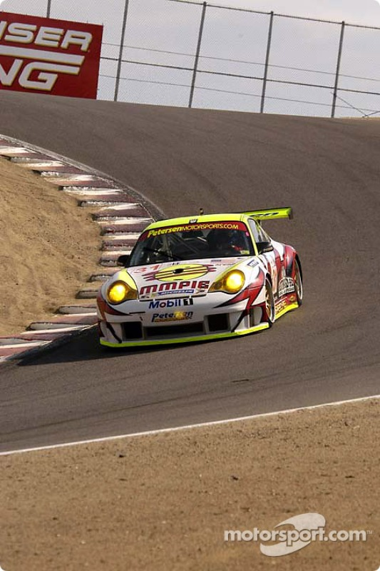 #31 White Lightning Racing Porsche 911 GT3 RSR: Craig Stanton , David Murry , Michael Petersen