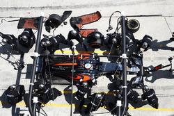 Fernando Alonso, McLaren MP4-31, pit actie
