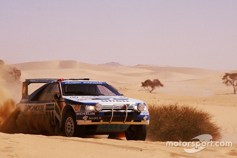 #204 Peugeot: Ari Vatanen, Bruno Berglund