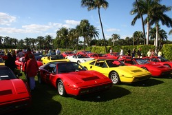 Ferraris on display